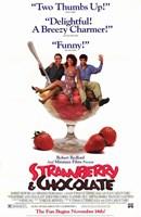 "Strawberry and Chocolate - 11"" x 17"""
