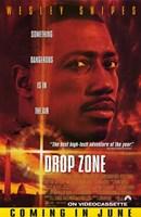 """Drop Zone - 11"""" x 17"""""""