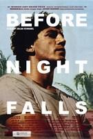 "Before Night Falls - 11"" x 17"""
