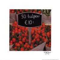 "Red Tulips by John Jones - 10"" x 10"""