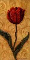 Red Tulip Fine Art Print