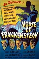 House of Frankenstein Fine Art Print