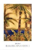 Bahama Splendor I Fine Art Print