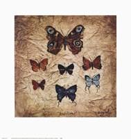 Papillons II Fine Art Print
