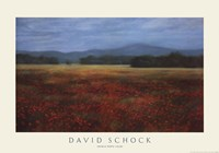 "French Poppy Fields by David Schock - 34"" x 24"""