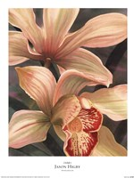 "Orchids I by Jason Higby - 18"" x 24"""