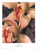 "Orchids II by Jason Higby - 18"" x 24"""