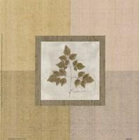 Leaf Element l Fine Art Print
