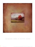 Crimson Tree Fine Art Print