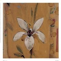 Camillo Fine Art Print
