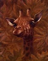 Safari Giraffe Framed Print