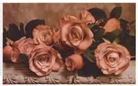 Dusty Rose Fine Art Print