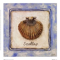 "Scallop by Sylvan Lake Collections - 9"" x 9"""