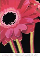 """Pink Heat by Alicia Bock - 27"""" x 39"""""""