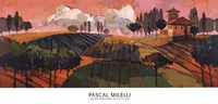 """Tuscan Landscape by Pascal Milelli - 40"""" x 19"""""""