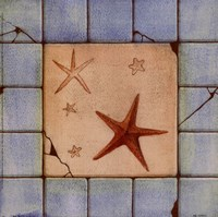 "9"" x 9"" Starfish Pictures"