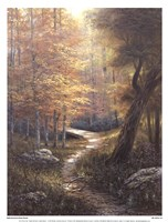 Aspen Beauty Fine Art Print