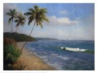 """Palma De La Playa by Karen Dupre - 17"""" x 13"""""""