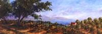 Lakeside Olives Fine Art Print