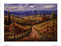 Vineyard Hill II Fine Art Print