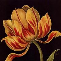 Fleur Rouge Et Jaune Fine Art Print