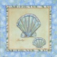 Bubble Bath Shells II Framed Print