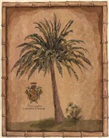 Caribbean Palm III With Bamboo Border Fine Art Print