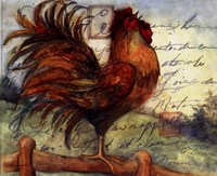 """Le Rooster I by Susan Winget - 10"""" x 8"""""""