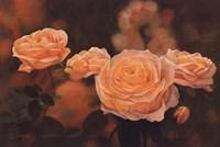 "Mandarin Heirloom Roses by Dina - 36"" x 24"""