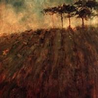 Vineyard Hill Fine Art Print