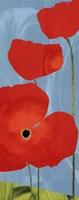 Poppy Sky Fine Art Print