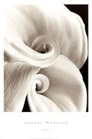 "Fleur No. 1 by Sondra Wampler - 24"" x 36"""