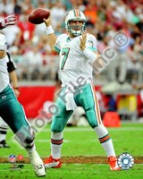 """Chad Henne 2008 Passing Action - 8"""" x 10"""", FulcrumGallery.com brand"""