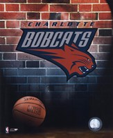 """8"""" x 10"""" Charlotte Bobcats Pictures"""