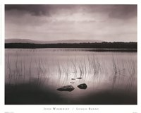 Lough Bunny Fine Art Print