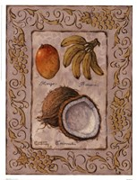 Tropical Fruit I Fine Art Print