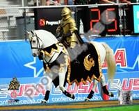 "University of Central Florida Knights Mascot 2007 - 10"" x 8"", FulcrumGallery.com brand"