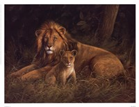 Lion And Cub Fine Art Print