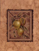 Citron Fructus Fine Art Print