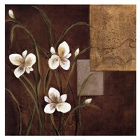 "Orchid Melody I by Teo Vineli - 30"" x 30"" - $25.99"