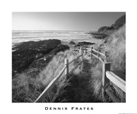 Pathway To Beach Fine Art Print