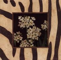 Paperwhites II Framed Print