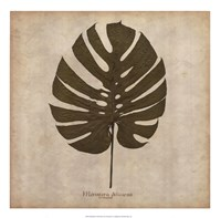 Windowleaf Fine Art Print