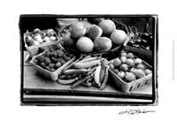 Farmer's Market I Framed Print