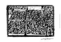 "Farmer's Market VI by Laura Denardo - 19"" x 13"", FulcrumGallery.com brand"