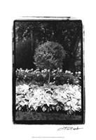 "Garden Hideaway II by Laura Denardo - 13"" x 19"", FulcrumGallery.com brand"