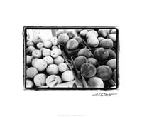 "Farmer's Market III by Laura Denardo - 22"" x 18"""
