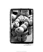 Farmer's Market IV Framed Print