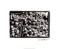 Farmer's Market V Framed Print