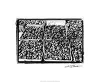 """Farmer's Market VI by Laura Denardo - 22"""" x 18"""""""